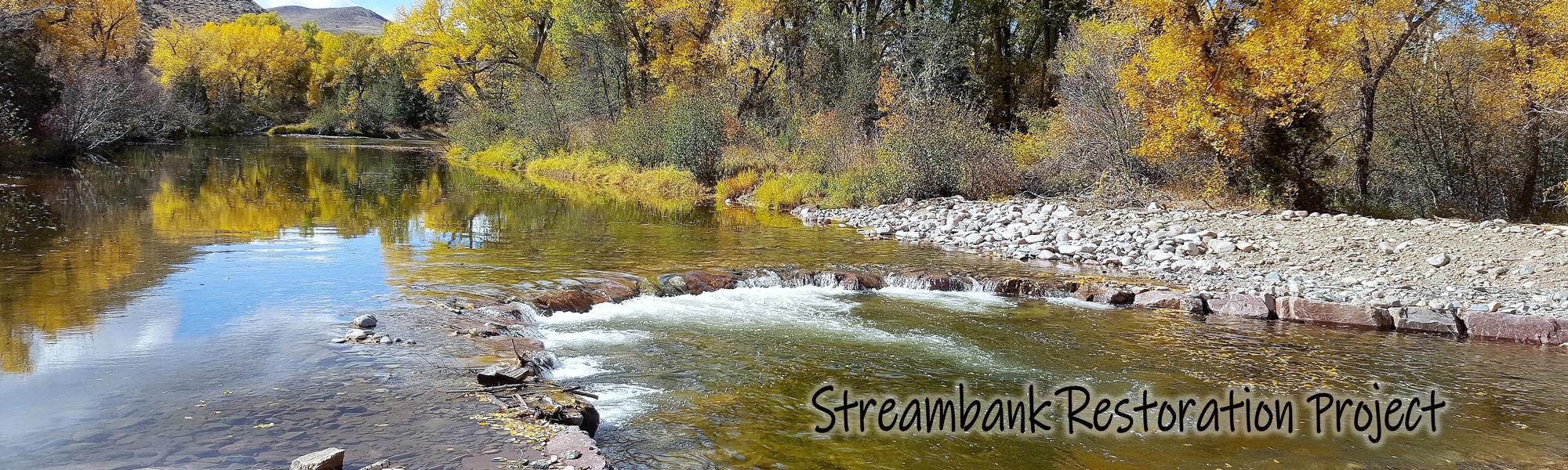 streambank restoration project
