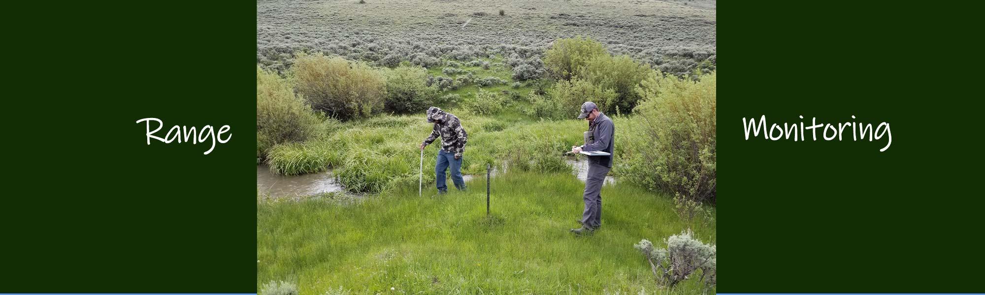 range-monitoring