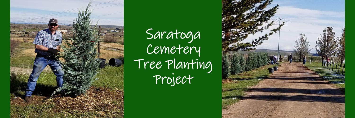 tree-planting-for-cemetery