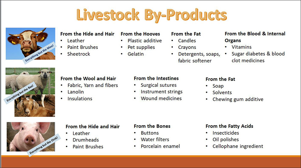 livestock-byproducts-slide-(3)